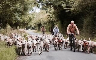 Hondenjaar2018_workshops_FEN_INTERACTION